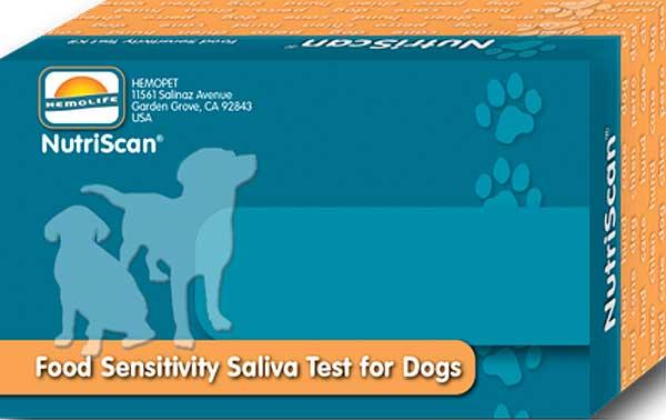 Una simple prueba de saliva permite identificar sensibilidades y alergias de los perros a determinados alimentos.