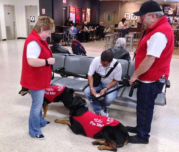 Pets Unstressing Passengers (PUP program): Treinta perros ayudan a los pasajeros con miedo a volar a superar sus fobias (Aeropuerto de Los Ángeles). C/vídeo.