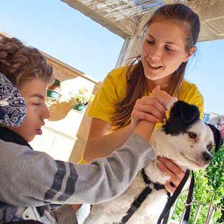 ¿Un amigo en casa?, el nuevo proyecto de voluntariado social de la Protectora de Alcoy con perros abandonados.