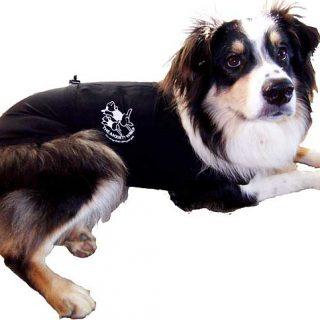 ¿Funcionan @AnxietyWrap y @Thundershirt con el miedo a las tormentas en #perros? (Vídeo).
