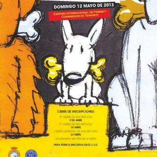 XVII Exposición Internacional Canina de Tenerife, próximo fin de semana.