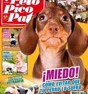"""Revista #PeloPicoPata, mayo 2013: #perros y bebés, la agresión en los perros, alimentación sana y natural para perros y gatos, futuro para perros desahuciados, héroes de nariz húmeda, enseñar """"suéltalo"""", otitis en perros (veterinaria)..."""