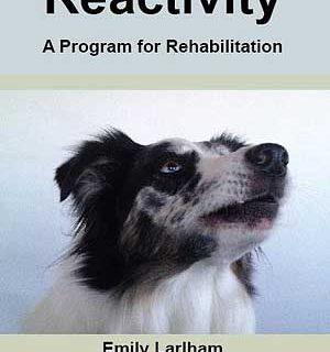 Rehabilitación de #perros reactivos, soluciones a la reactividad canina, por Emily Larlham @Dogmantics.