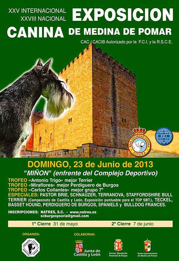 XXV Exposición Canina Internacional y XXVIII Exposición Canina Nacional de Medina de Pomar, próximo fin de semana.