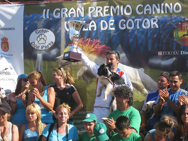 La gran fiesta del Agility en la Gotor Dog Party, así ha sido, por Rubén Jurado.