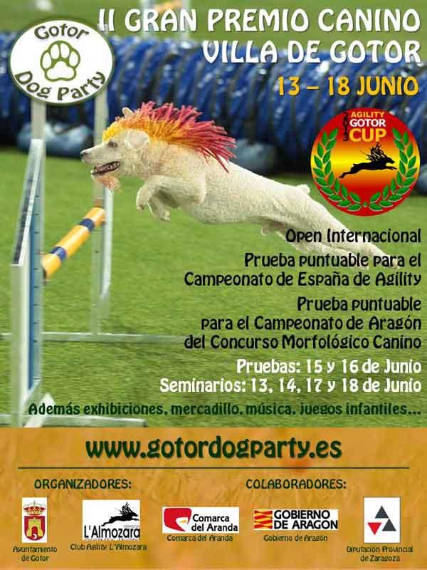 Gotor Dog Party, la gran fiesta del agility, el próximo fin de semana.