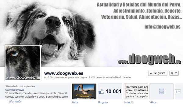 """¿Quieres conocer las cifras de doogweb? ¡Ya somos 10.000 """"doogweber@s""""! ¡Gracias!"""