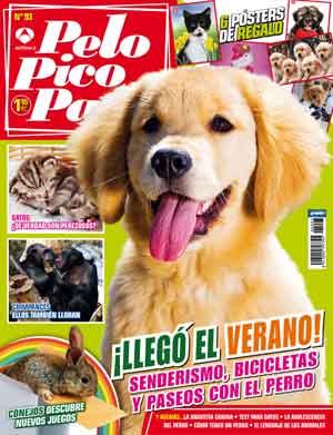 Revista Pelo Pico Pata julio: paseadores de perros, perros adolescentes, parques caninos, bicicletas y senderismo con perros, la angustia en los perros, ¿por qué tiran de la correa?