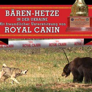 Tras las duras críticas por el patrocinio de Royal Canin Ucrania a las peleas de osos con perros, Royal Canin emite este comunicado.
