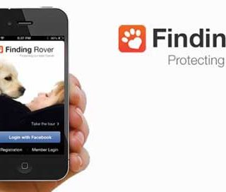 Finding Rover (app para perros perdidos con reconocimiento facial y geolocalización).