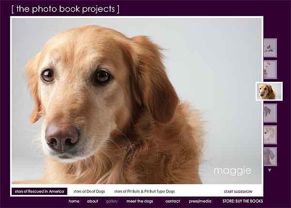PhotoBook projects. Supervivientes de granjas de cachorros.