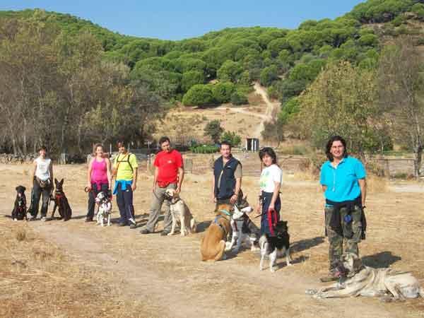 Senderismo con #perros por el valle del Tiétar, socialización y modificación de conductas aprovechando la Naturaleza.