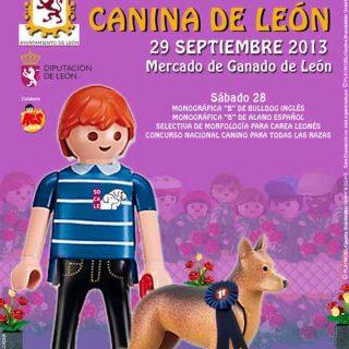 XVI Exposición Internacional Canina de León, próximo fin de semana.