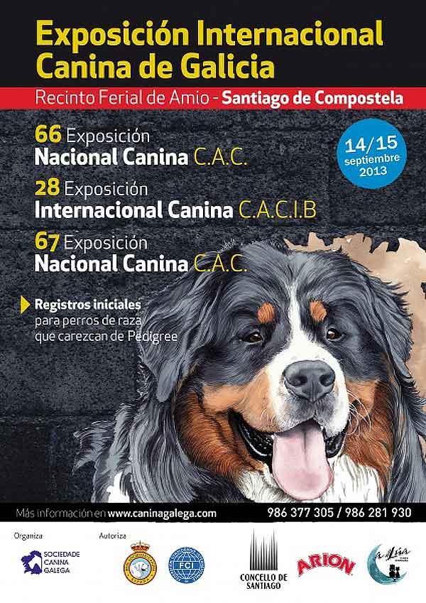 Exposición Canina Nacional e Internacional en Santiago de Compostela, 14 y 15 de septiembre.