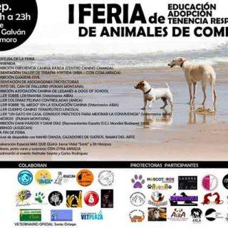 """1ª Feria de Educación, Adopción y Tenencia Responsable de Animales y charla gratuita """"Educar sin castigos""""."""