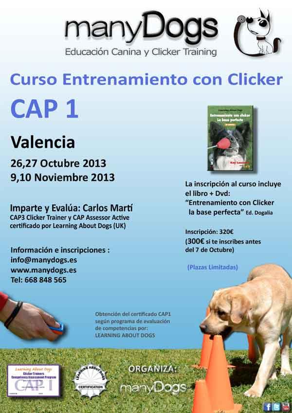 ManyDogs: Cursos de  clicker y Educación Canina, actividades octubre 2013 en Valencia.