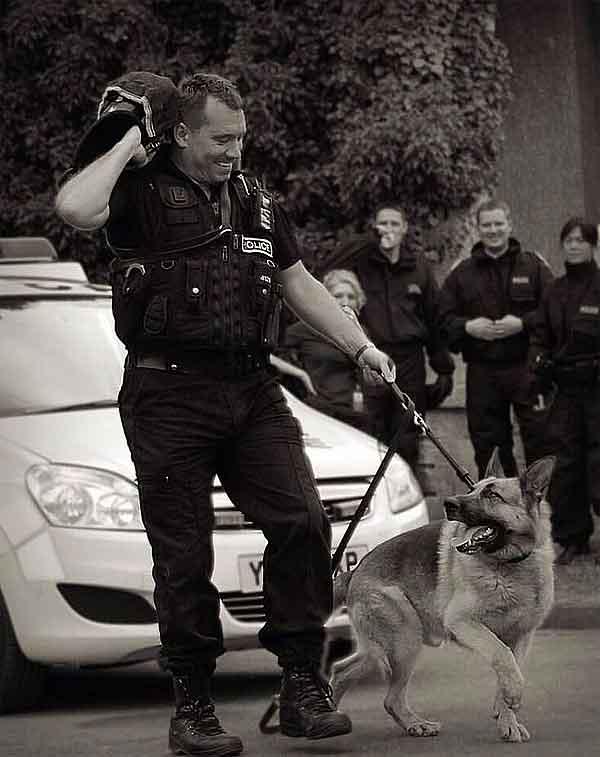 Perros policías retirados... ¿Qué es de ellos?