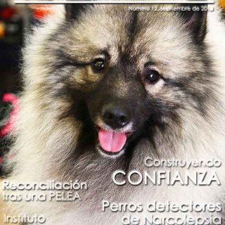 Revista doogweb nº 12, descárgala gratis
