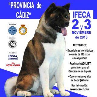 """Próximo fin de semana: Exposición Nacional e Internacional Canina """"Provincia de Cádiz"""" en Jerez de la Frontera."""