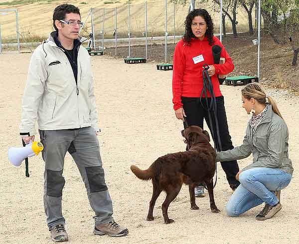 Entrevistamos a Luis Souto, Director del Instituto de Formación Continua EDUCAN. «Estamos ante una situación tan dinámica que aún deparará sorpresas y respecto a la cual ningún enamorado del perro puede quedarse al margen».
