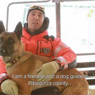 Perros de rescate en avalanchas y aludes de nieve (c/vídeo).