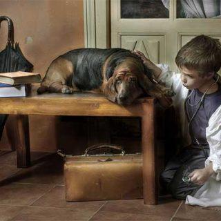 Retratos de perros con el personalísimo estilo de Javier Senosiaín.