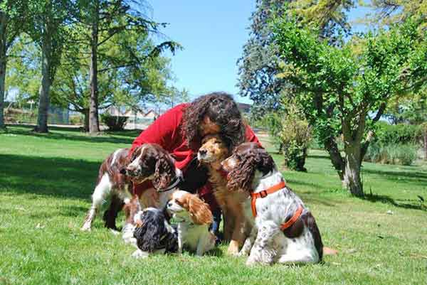 El CAP Bordeta-Magraners, será el primero de toda España en ofrecer terapia asistida con perros.