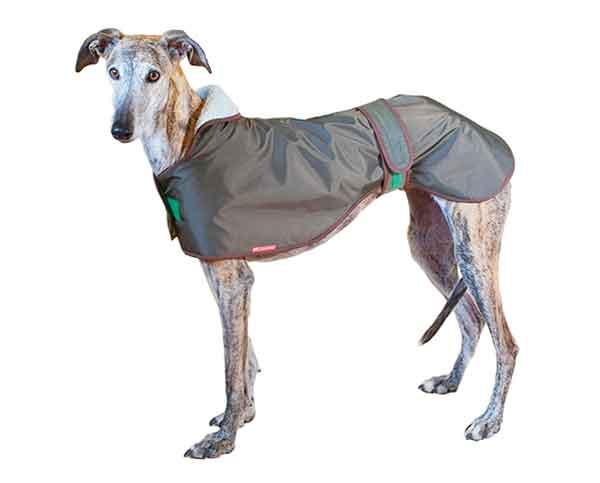 Collares Martingale para galgos, abrigos para galgos y mucho más en La Tienda del Galgo.