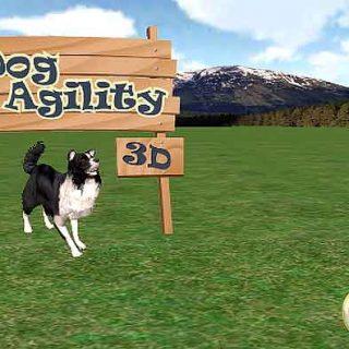 Dog Agility 3D: #App de agility para smartphones.