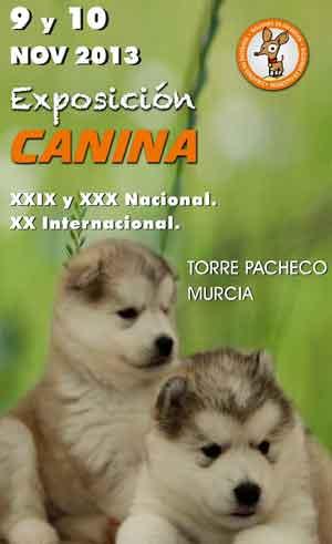 Exposición Canina Nacional/Internacional de Murcia