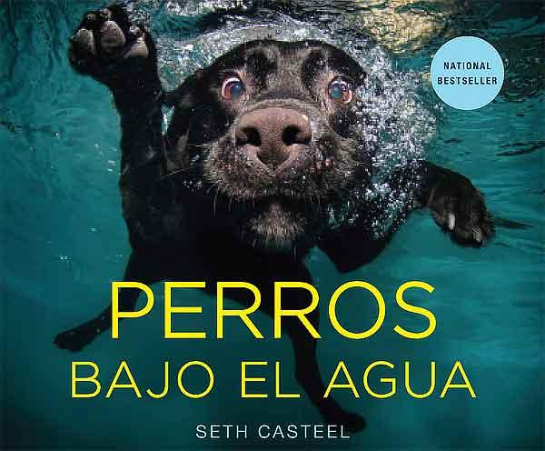 Perros bajo el agua (versión para España de Underwater dogs), el libro de Seth Casteel, ya está disponible.