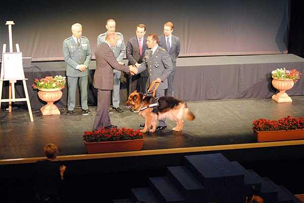 Ajax, el #perro de la Guardia Civil, disecado y expuesto en el Museo de la Guardia Civil.
