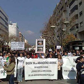 La Asociación Arca de Noé Córdoba, lleva desde hace años sobre sus espaldas el peso de una denuncia por construcción ilegal de su albergue y la amenaza inminente del desalojo del mismo.