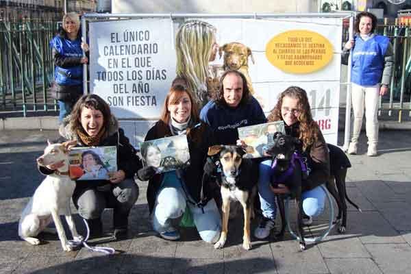 Tres perros adoptados presentan el único calendario del mundo en el que todos los días del año son fiesta. Con El Refugio.
