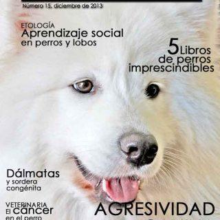 Revista gratis doogweb nº 15, diciembre 2013