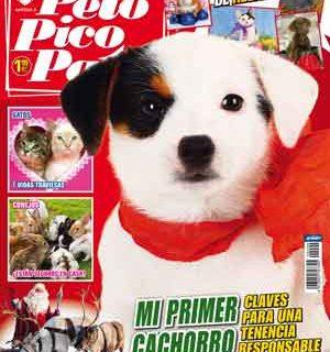 Pelo Pico Pata, enero 2014: Primer cachorro, tenencia responsable, setters, Navidad...