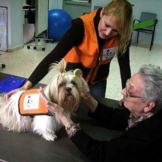 Completísimo Curso de Terapia Asistida con Animales y perros de terapia con Xanan Animals.