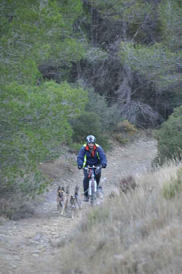 Etapas 1 y 2 de la XXII Travesía de Los Monegros con Perros de Tiro. Fría noche para los mushers en lo alto de la Sierra de Alcubierre. Clasificación.