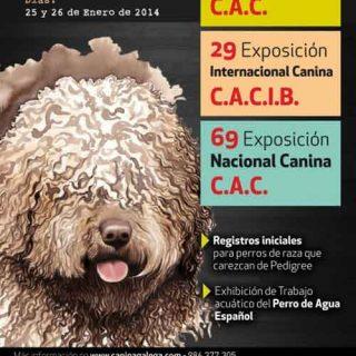 68-69 Exposición Nacional Canina y 29 Exposición Internacional Canina de Galicia (Vigo), horarios, cómo llegar...