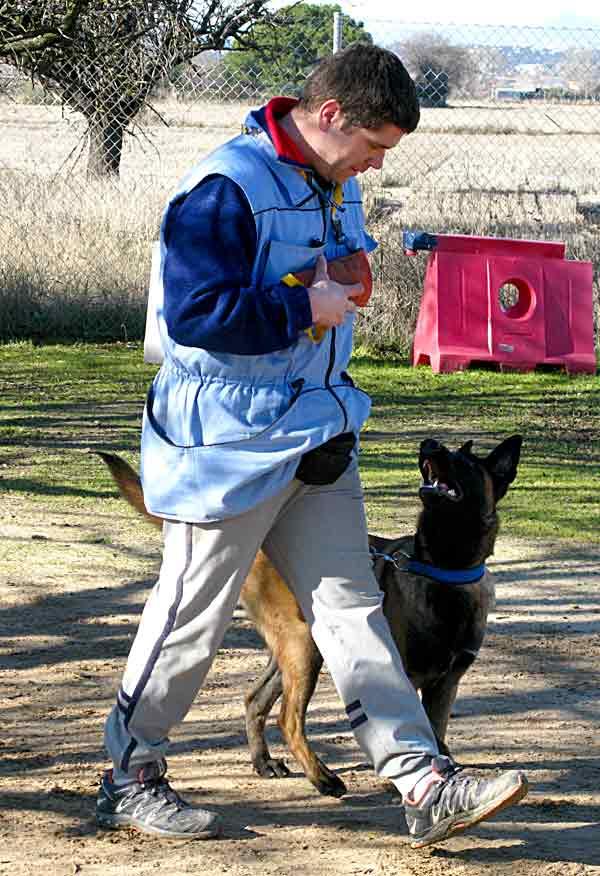 ¿Le caes bien a tu perro? Dependerá de lo que trabajes con él.