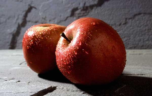 Frutas que SÍ pueden comer los perros. (Y además son beneficiosas).