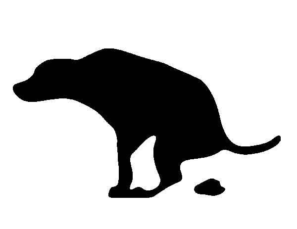 Los #perros... ¿son sensibles a los campos magnéticos de la Tierra? Parece, que sí, al menos cuando hacen caca.