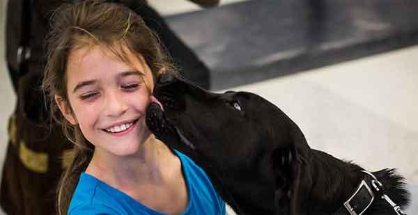 Nuevo servicio de perros de ayuda y terapia en el aeropuerto de San Francisco.