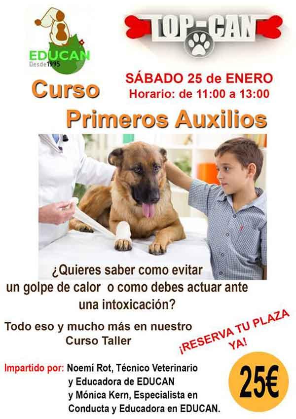 Taller práctico de primeros auxilios para perros, próximo 25 de enero en Madrid.