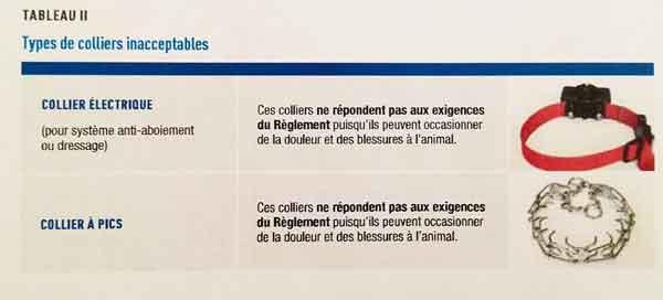 Quebec prohíbe los collares eléctricos y de castigo.