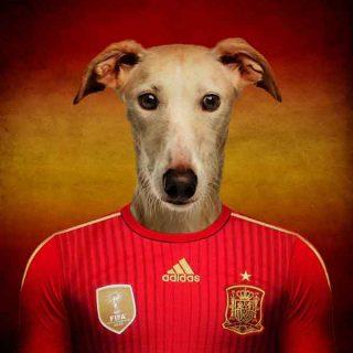Un artista belga ha creado un singular proyecto de cara al Mundial de Fútbol 2014: A cada selección la ha identificado con una raza de #perro.