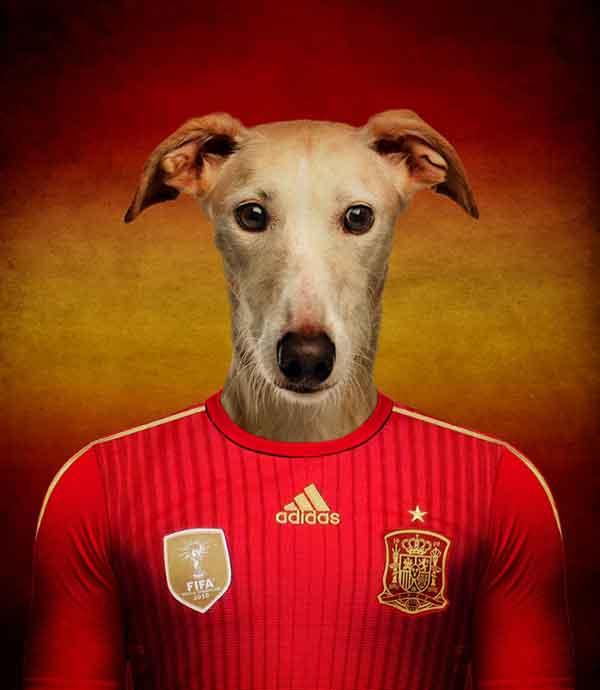 Un artista belga ha creado un singular proyecto de cara al Mundial de Fútbol 2014 llamado Soccer Nations Dogs: A cada selección la ha identificado con una raza de #perro.