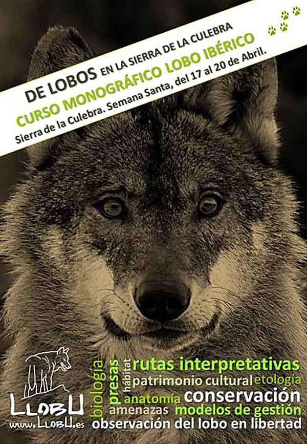 """Curso monográfico sobre el lobo ibérico: """"De lobos por la Sierra de la Culebra""""."""