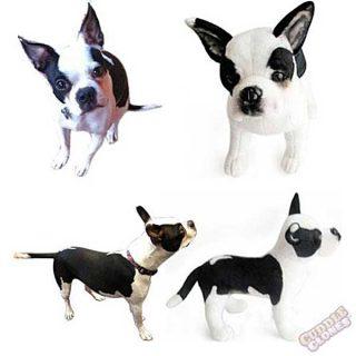 """¿Quieres clonar a tu #perro (o gato)? 199 dólares y un """"clon abrazable"""" estará en camino."""