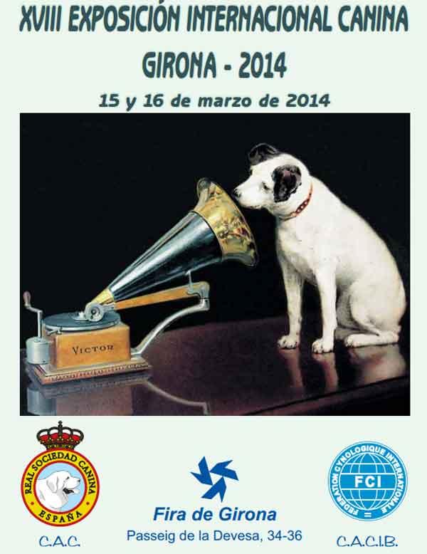 XVIII Exposición Canina Internacional de Gerona, próximo fin de semana en la Fira de Girona.